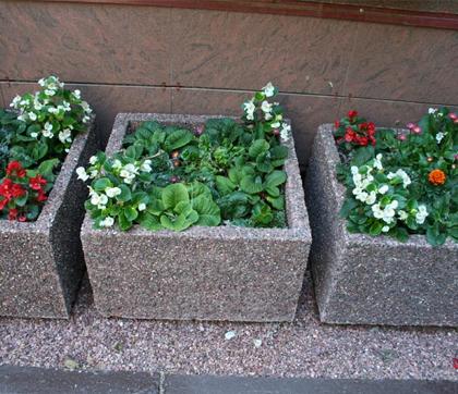 Озеленение с бетонными цветниками