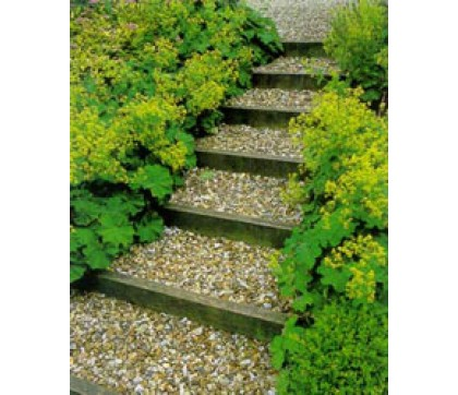 Создание ступенек для сада